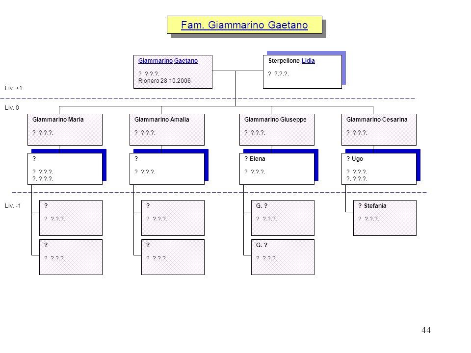 44 Fam. Giammarino Gaetano Liv. +1 Liv. 0 Liv. -1 ? Ugo ? ?.?.?. ?. ?.?.?. ? Elena ? ?.?.?. Giammarino Giuseppe ? ?.?.?. Giammarino Cesarina ? ?.?.?.