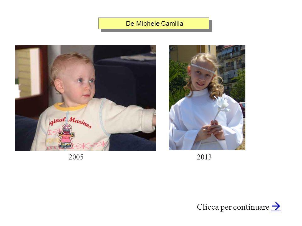 De Michele Camilla Clicca per continuare 20052013