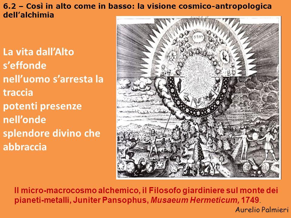 Aurelio Palmieri 6 – Lopus alchemico: trasmutazione dei metalli, trasmutazione dellartifex Il matrimonio nel macro e microcosmo attraverso l Alchimia