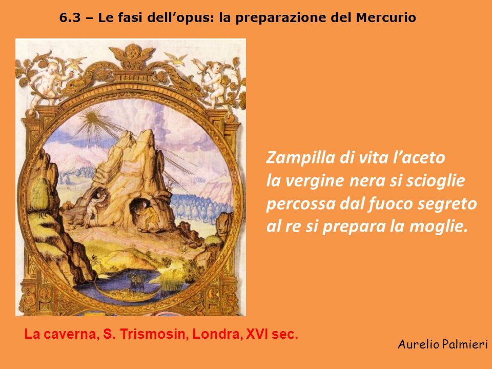 Aurelio Palmieri 6.2 – Così in alto come in basso: la visione cosmico-antropologica dellalchimia Il micro-macrocosmo alchemico, il Filosofo giardinier