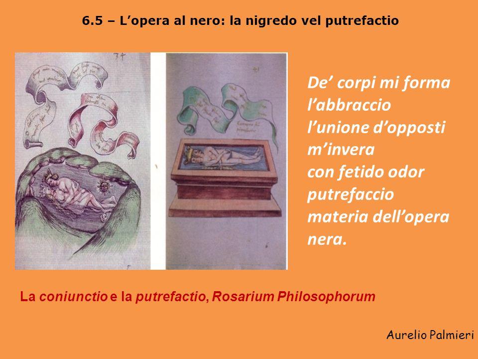 Aurelio Palmieri 6.4 – La coniunctio (complexio) oppositorum o le nuptiae chemicae Seconda fase della coniunctio e bagno, Rosarium Philosophorum. Avvo