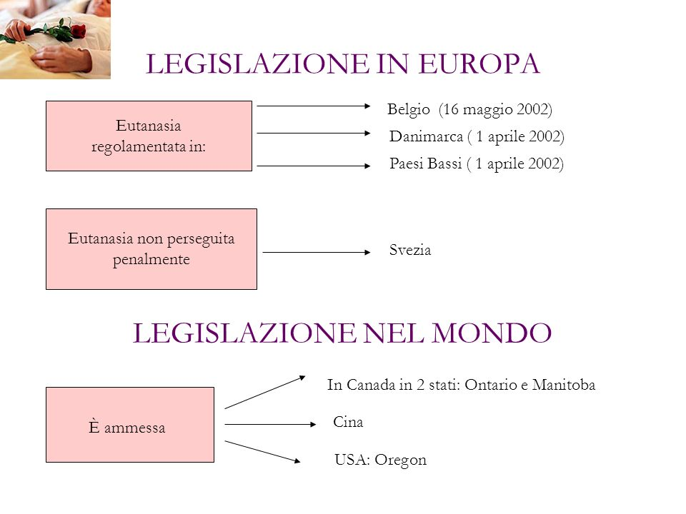LEGISLAZIONE IN EUROPA Eutanasia regolamentata in: Belgio (16 maggio 2002) Danimarca ( 1 aprile 2002) Paesi Bassi ( 1 aprile 2002) Eutanasia non perse