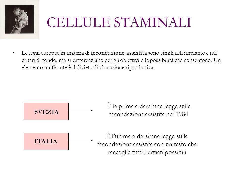 CELLULE STAMINALI Le leggi europee in materia di fecondazione assistita sono simili nellimpianto e nei criteri di fondo, ma si differenziano per gli o