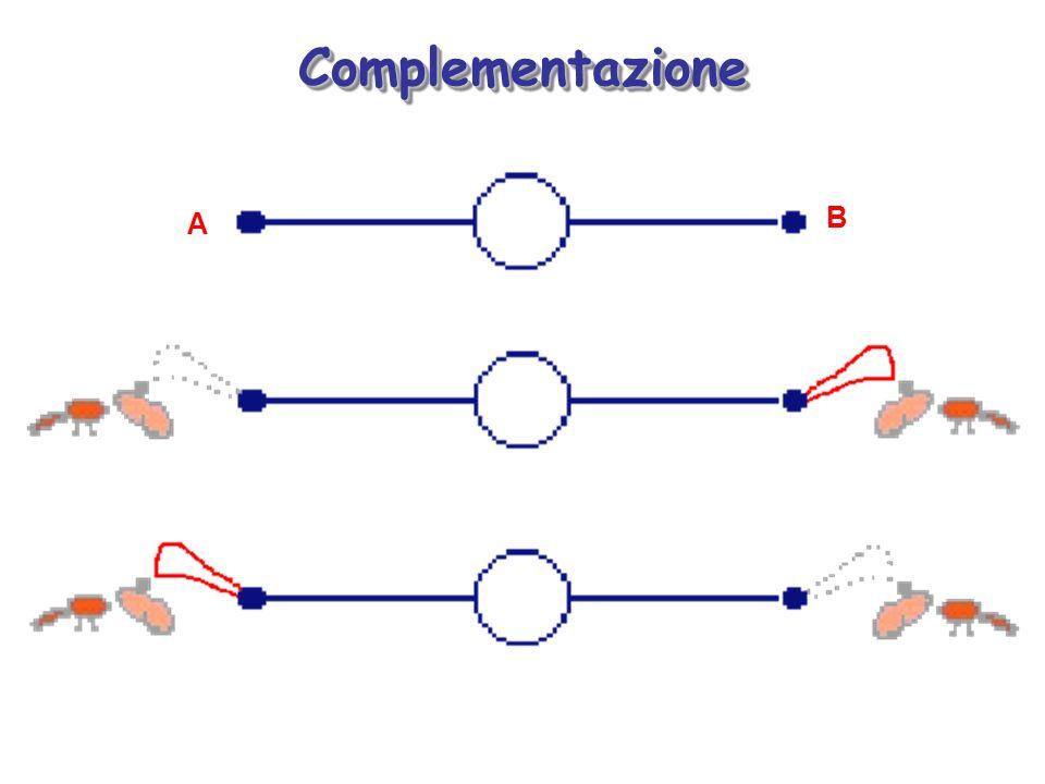 ComplementazioneComplementazione A B