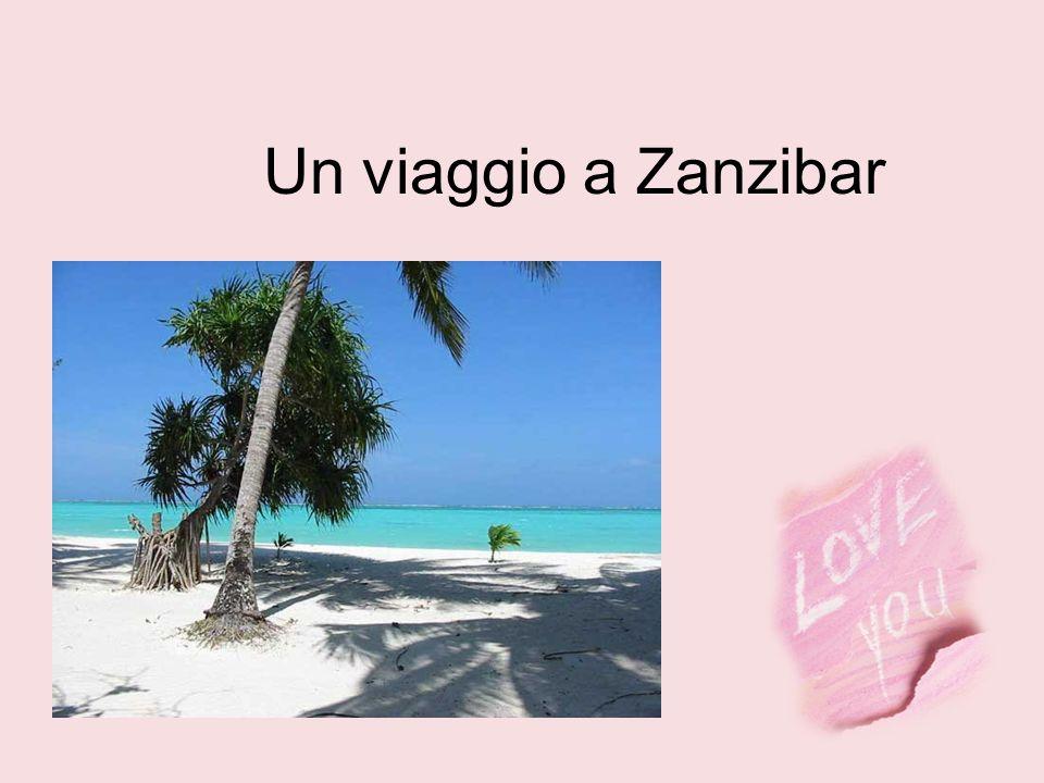 Un viaggio a Zanzibar