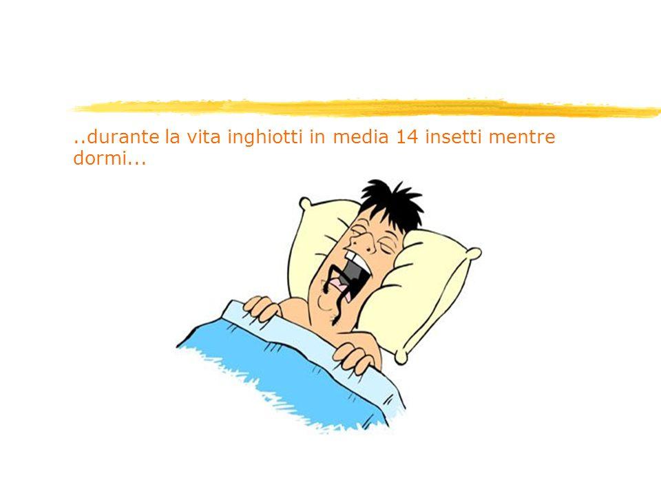 ..durante la vita inghiotti in media 14 insetti mentre dormi...