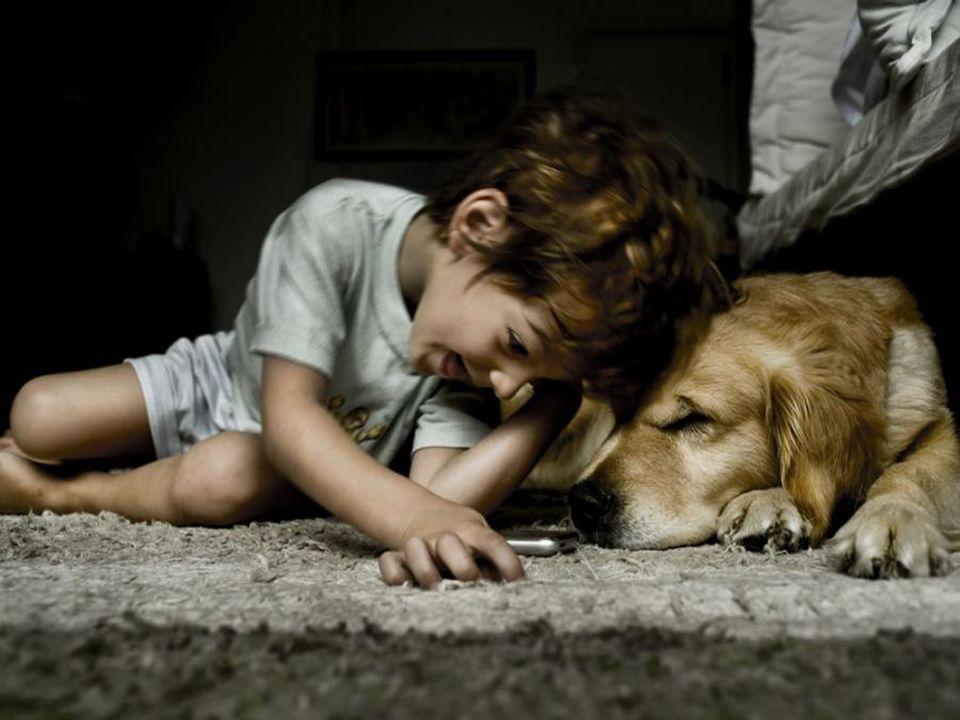 1 - La sperimentazione animale che implica una sofferenza fisica e psichica è incompatibile con i diritti dell'animale sia che si tratti di una sperim