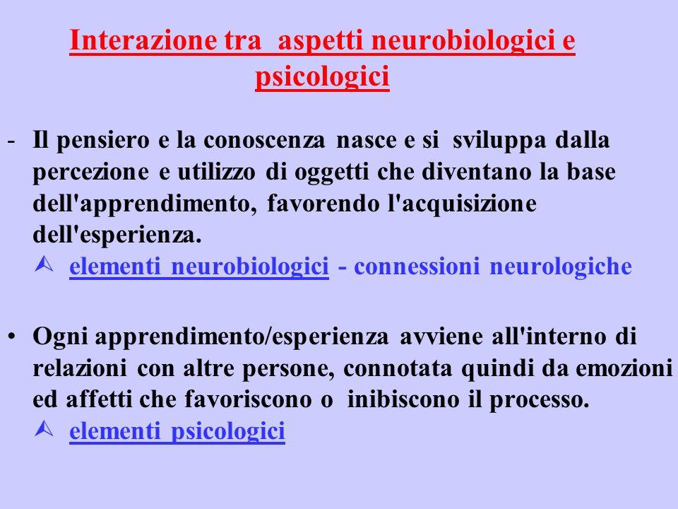 Interazione tra aspetti neurobiologici e psicologici -Il pensiero e la conoscenza nasce e si sviluppa dalla percezione e utilizzo di oggetti che diventano la base dell apprendimento, favorendo l acquisizione dell esperienza.
