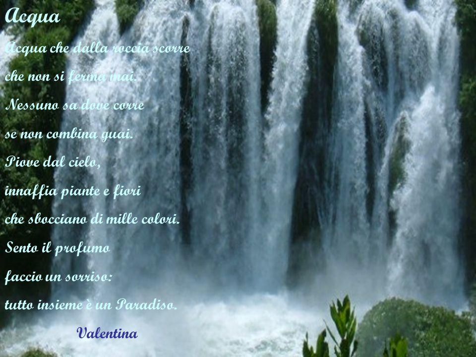 Acqua Acqua che dalla roccia scorre che non si ferma mai. Nessuno sa dove corre se non combina guai. Piove dal cielo, innaffia piante e fiori che sboc
