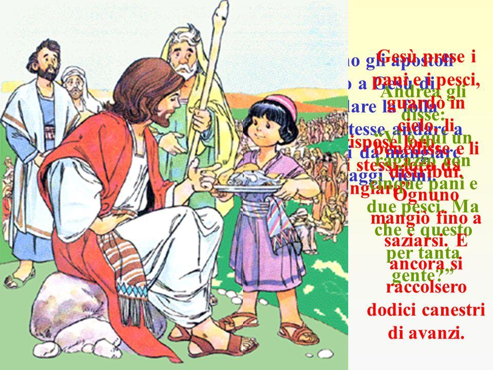 La fama di Gesù si era molto diffusa.. Tutti volevano vederlo, ascoltarlo e chiedergli aiuto. Un giorno predicava sulla riva del mare, stando sulla ba