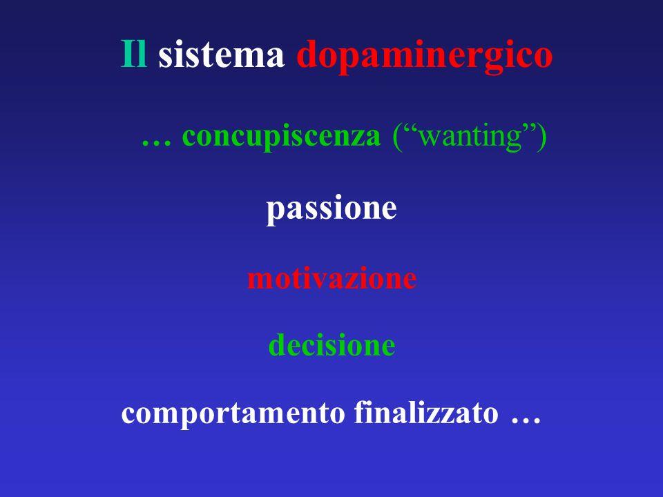 Il sistema dopaminergico … concupiscenza (wanting) passione motivazione decisione comportamento finalizzato …