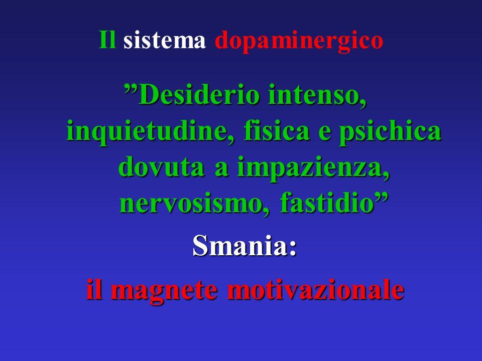 Il sistema dopaminergico Desiderio intenso, inquietudine, fisica e psichica dovuta a impazienza, nervosismo, fastidio Smania: il magnete motivazionale