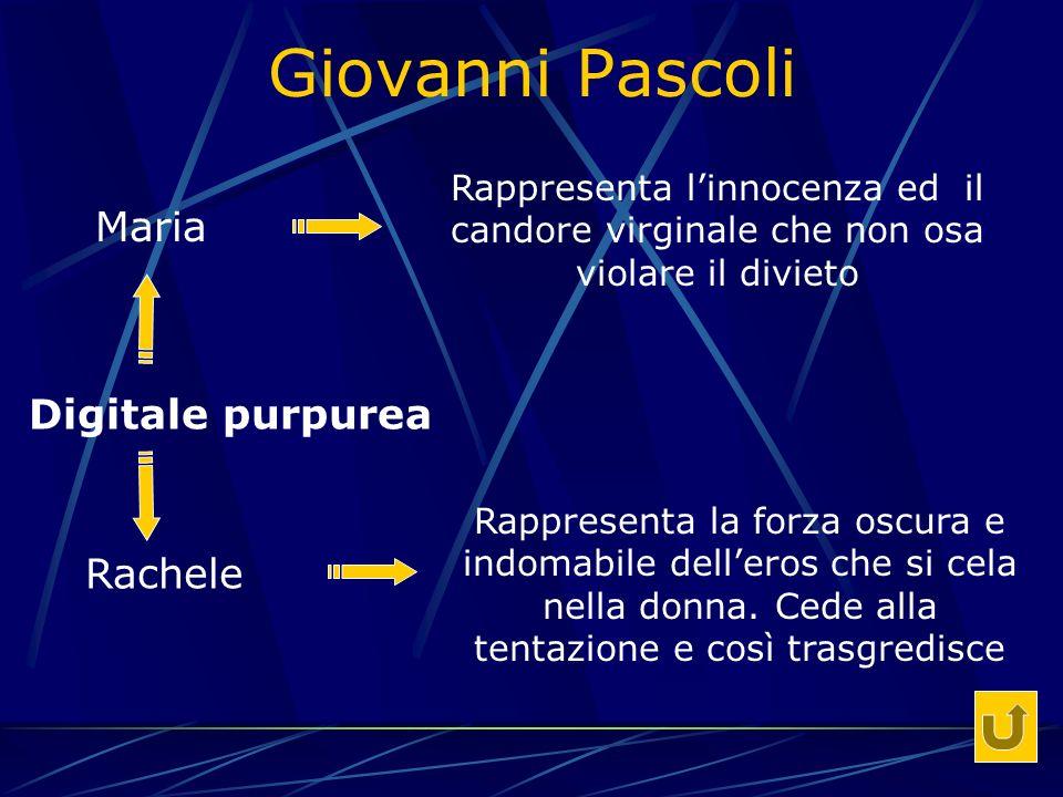 Giovanni Pascoli Digitale purpurea Rappresenta linnocenza ed il candore virginale che non osa violare il divieto Maria Rachele Rappresenta la forza oscura e indomabile delleros che si cela nella donna.