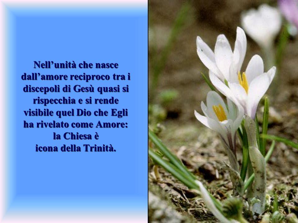 Nellunità che nasce dallamore reciproco tra i discepoli di Gesù quasi si rispecchia e si rende visibile quel Dio che Egli ha rivelato come Amore: la C