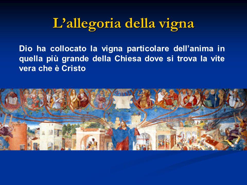 Lallegoria della vigna Dio ha collocato la vigna particolare dellanima in quella più grande della Chiesa dove si trova la vite vera che è Cristo