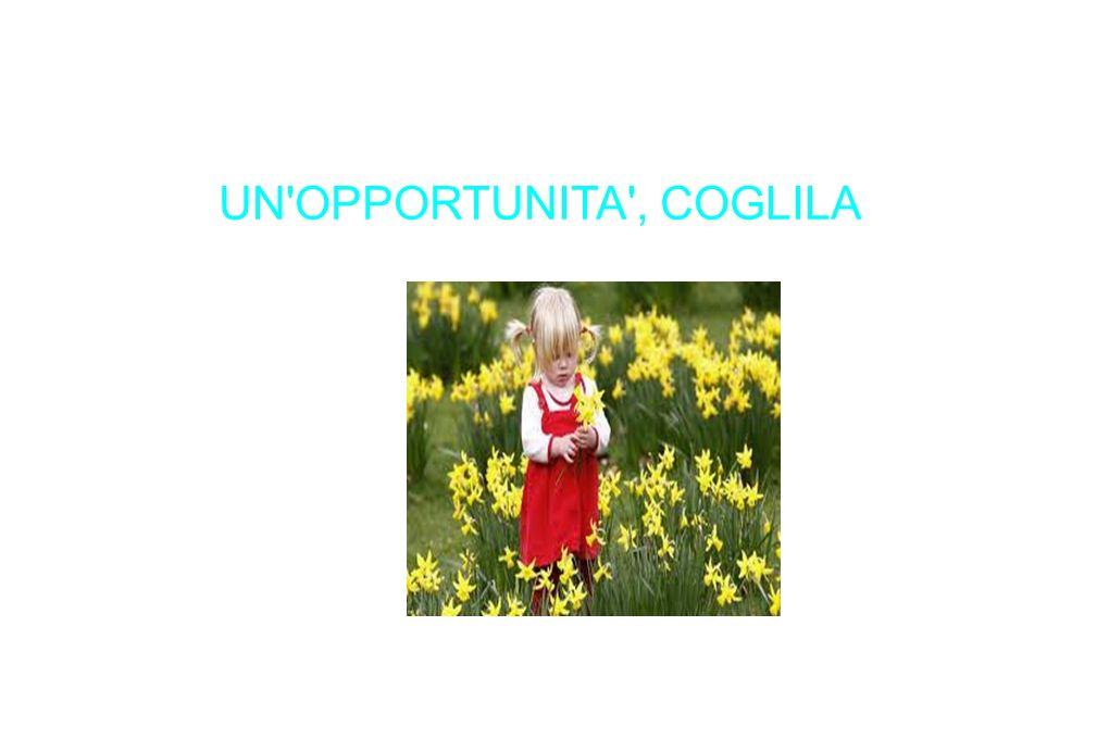 UN OPPORTUNITA , COGLILA