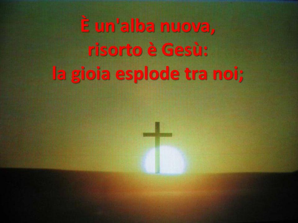 È un'alba nuova, risorto è Gesù: la gioia esplode tra noi;
