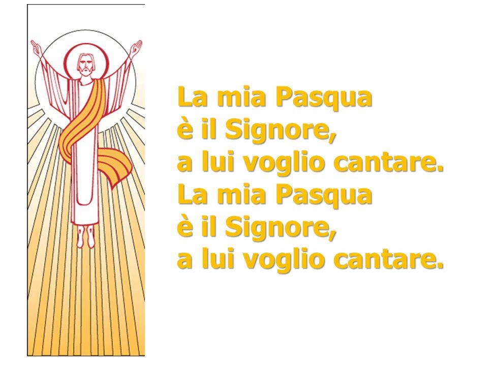 La mia Pasqua è il Signore, a lui voglio cantare. La mia Pasqua è il Signore, a lui voglio cantare.