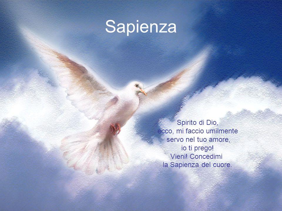 Intelletto Spirito di Dio, Eccomi, ti chiedo perdono, purifica la mia anima e donale la coscienza vera della propria vita.