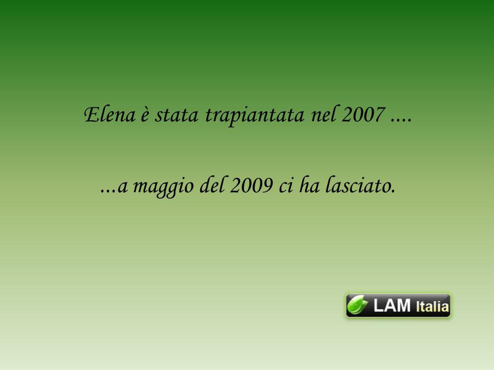 Elena è stata trapiantata nel 2007.......a maggio del 2009 ci ha lasciato.