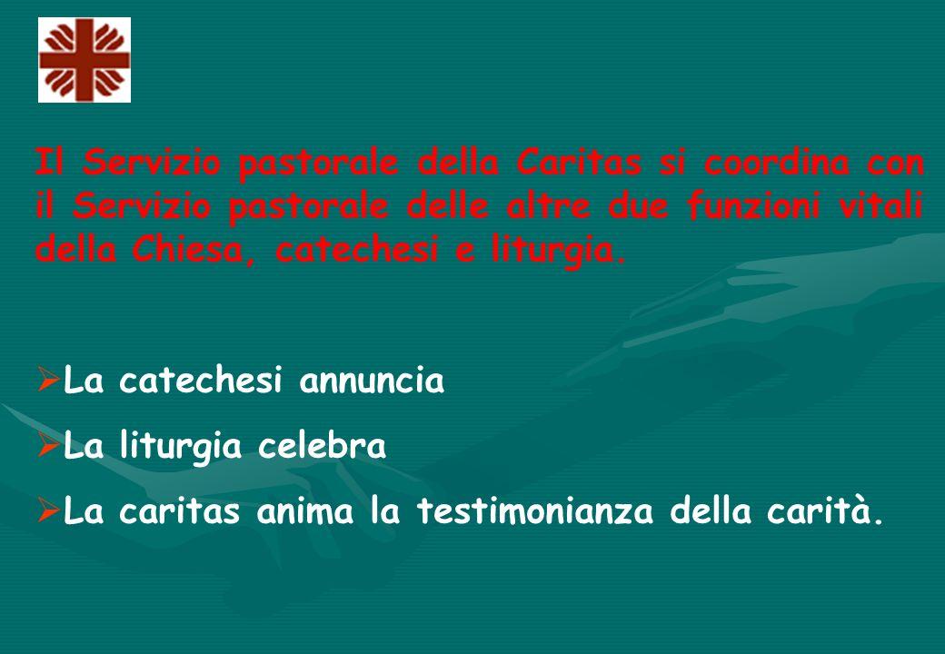 Il Servizio pastorale della Caritas si coordina con il Servizio pastorale delle altre due funzioni vitali della Chiesa, catechesi e liturgia.