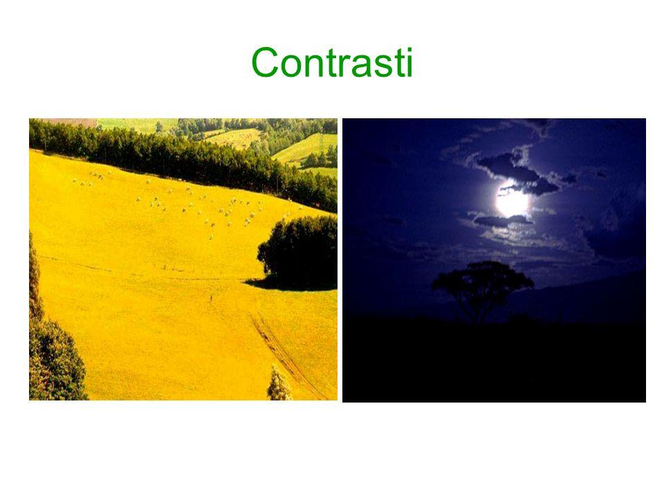 Contrasti
