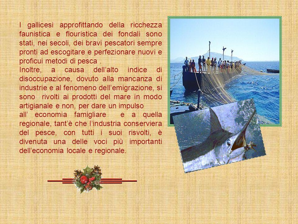 Leconomia di Gallico è strettamente collegata alla conformazione del suolo, allaspetto orografico, idrografico alla posizione geografica, alle eventua
