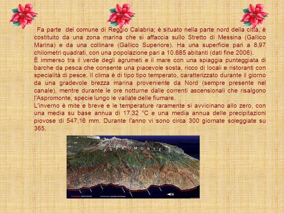 Gallico si estende in una ridente pianura situata sulla costa del MAR TIRRENO, circondata da amene collinette coltivate a vigneti,agrumeti e oliveti c