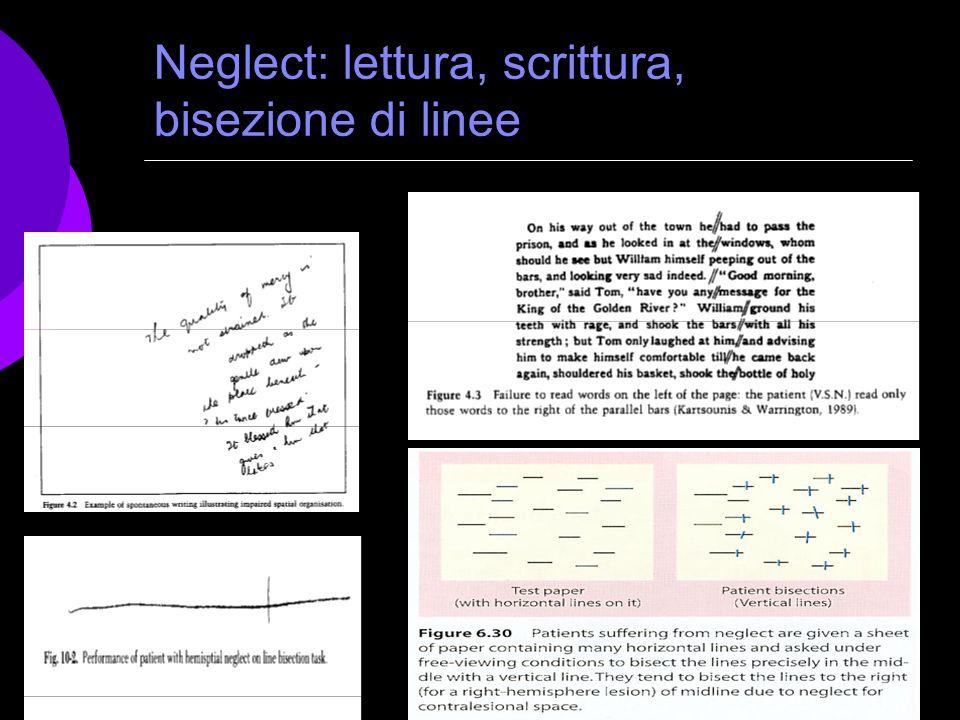 104 Neglect: lettura, scrittura, bisezione di linee