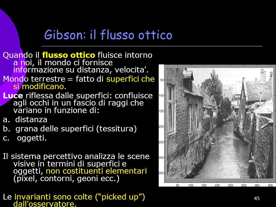45 Gibson: il flusso ottico Quando il flusso ottico fluisce intorno a noi, il mondo ci fornisce informazione su distanza, velocita. Mondo terrestre =