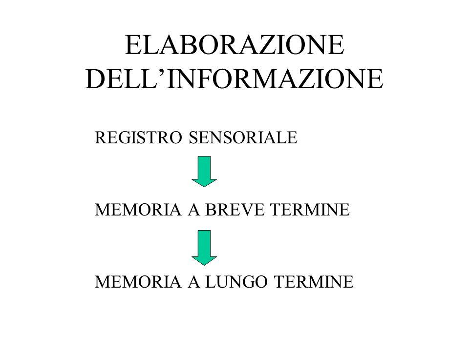 ELABORAZIONE DELLINFORMAZIONE REGISTRO SENSORIALE MEMORIA A BREVE TERMINE MEMORIA A LUNGO TERMINE