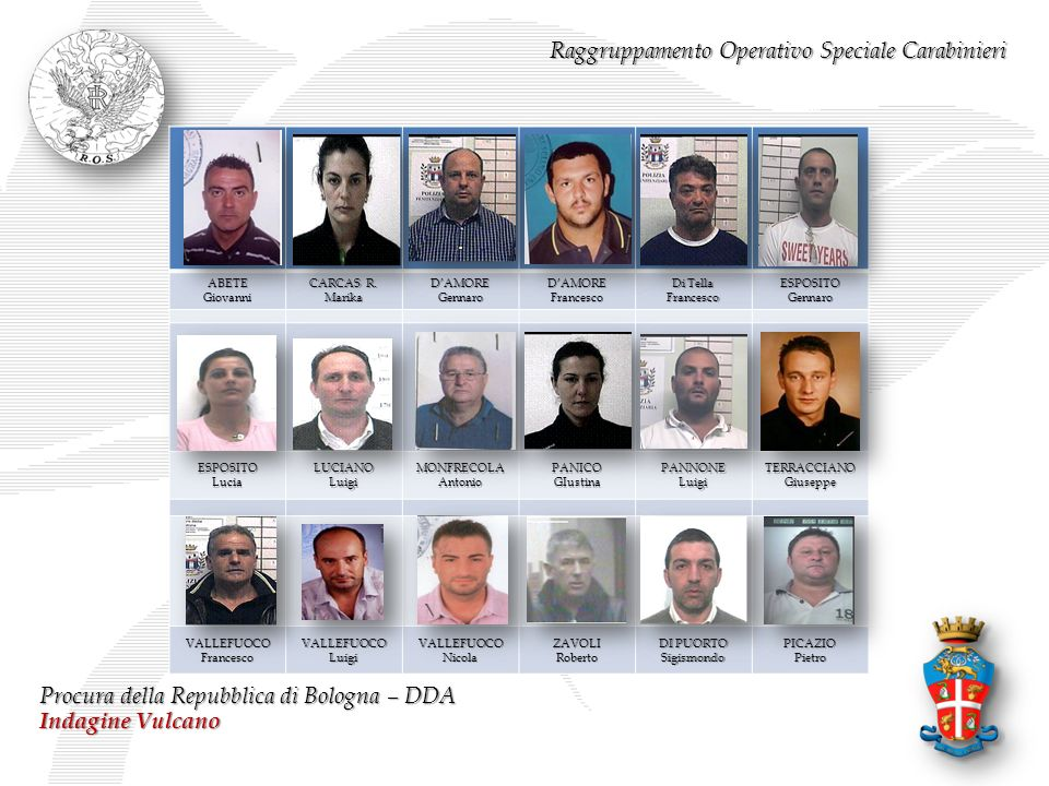 Raggruppamento Operativo Speciale Carabinieri Procura della Repubblica di Bologna – DDA Indagine Vulcano