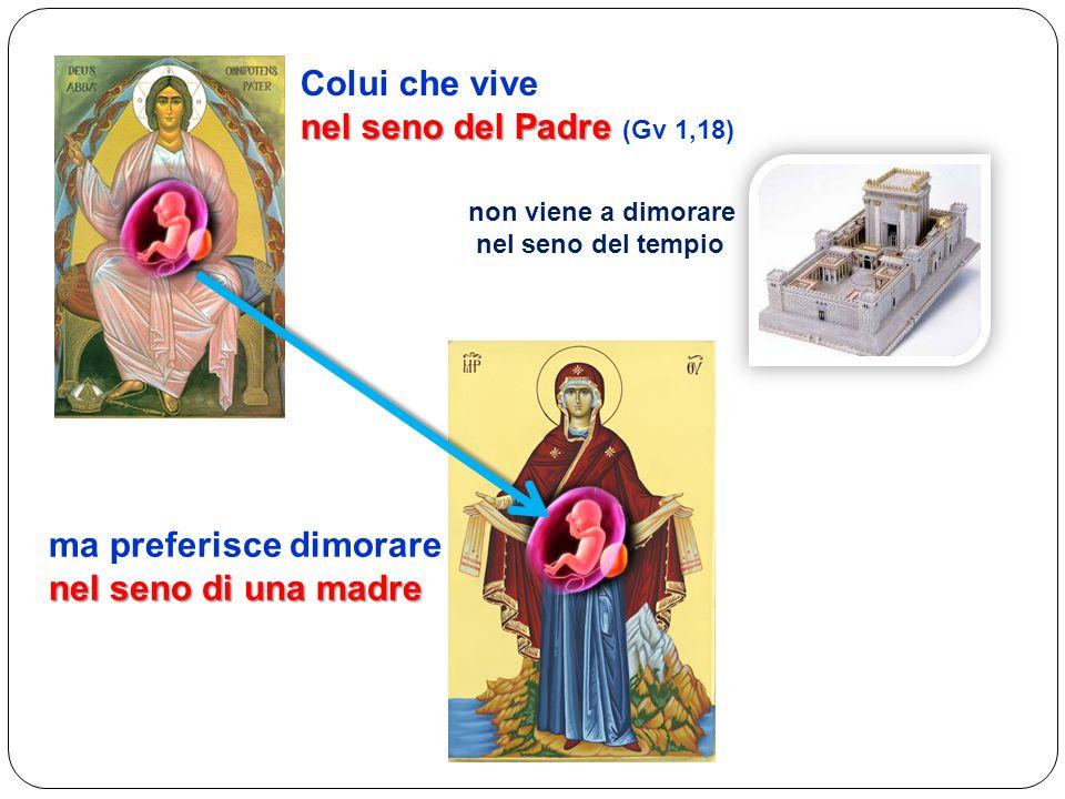 Colui che vive nel seno del Padre nel seno del Padre (Gv 1,18) non viene a dimorare nel seno del tempio ma preferisce dimorare nel seno di una madre