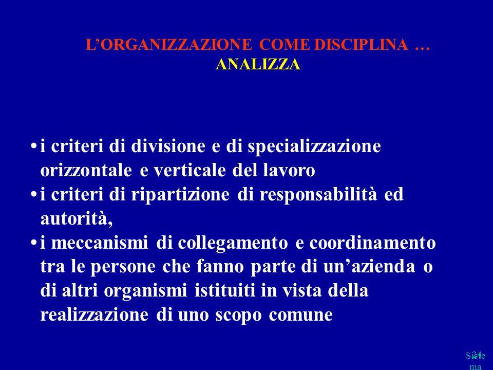 Siste ma cap 2 parte B 24 i criteri di divisione e di specializzazione orizzontale e verticale del lavoro i criteri di ripartizione di responsabilità