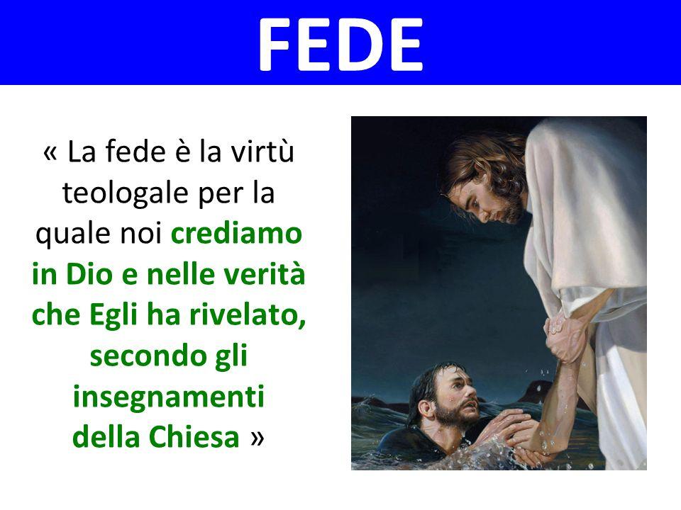 « La fede è la virtù teologale per la quale noi crediamo in Dio e nelle verità che Egli ha rivelato, secondo gli insegnamenti della Chiesa » FEDE