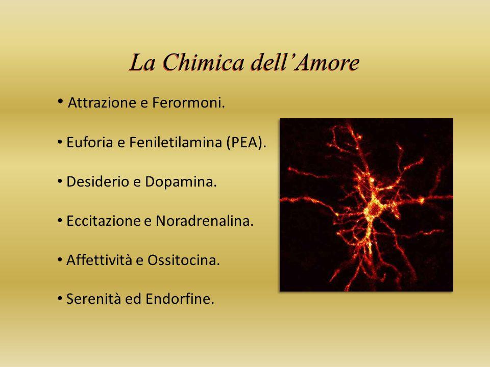 La Chimica dellAmore Attrazione e Ferormoni.Euforia e Feniletilamina (PEA).