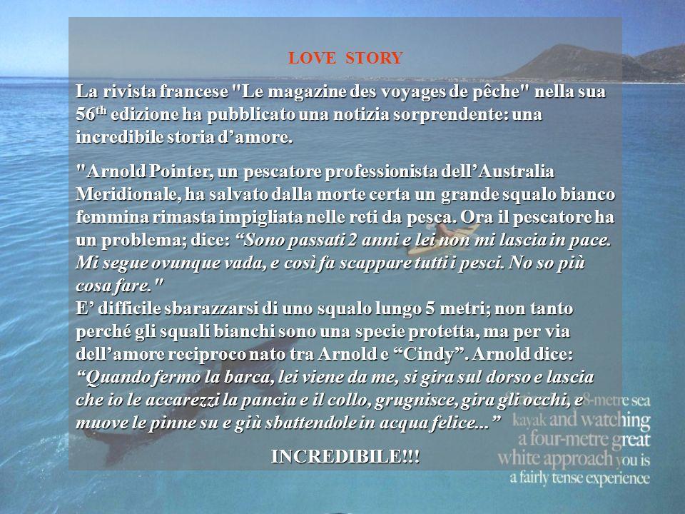 LOVE STORY La rivista francese Le magazine des voyages de pêche nella sua 56 th edizione ha pubblicato una notizia sorprendente: una incredibile storia damore.
