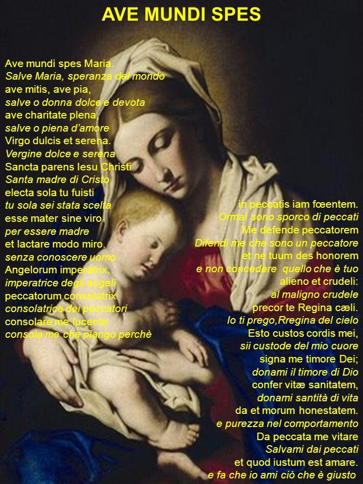 AVE MUNDI SPES Ave mundi spes Maria. Salve Maria, speranza del mondo ave mitis, ave pia, salve o donna dolce e devota ave charitate plena, salve o pie