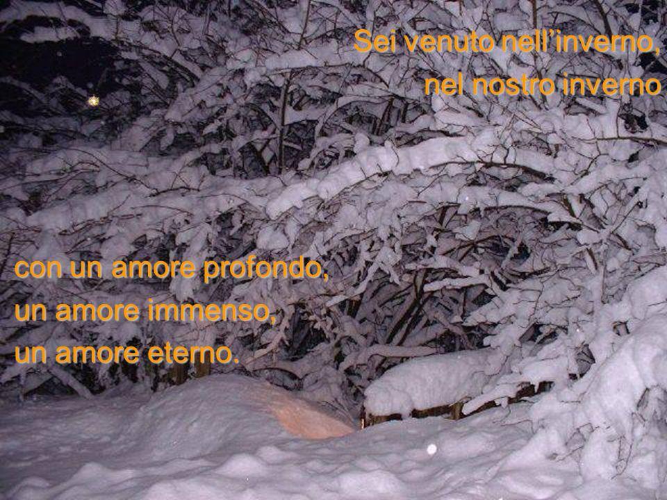 Sei venuto nellinverno, nel nostro inverno con un amore profondo, un amore immenso, un amore eterno.
