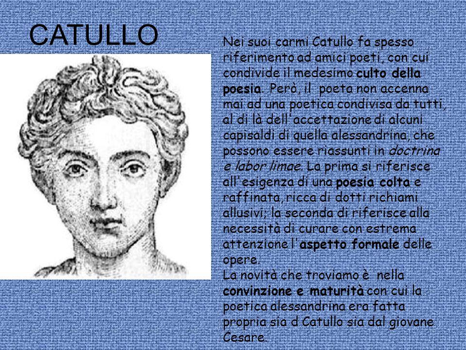 Nei suoi carmi Catullo fa spesso riferimento ad amici poeti, con cui condivide il medesimo culto della poesia. Però, il poeta non accenna mai ad una p