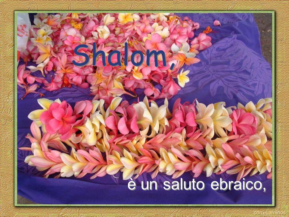 è un saluto ebraico, Shalom,
