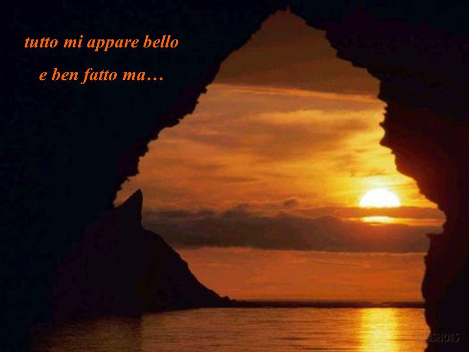 Gli rispose il Signore: Amico, anchio sento i tuoi passi accanto ai miei e gioisco della tua presenza, apri il cuore e chiedimi ció che vuoi sapere...