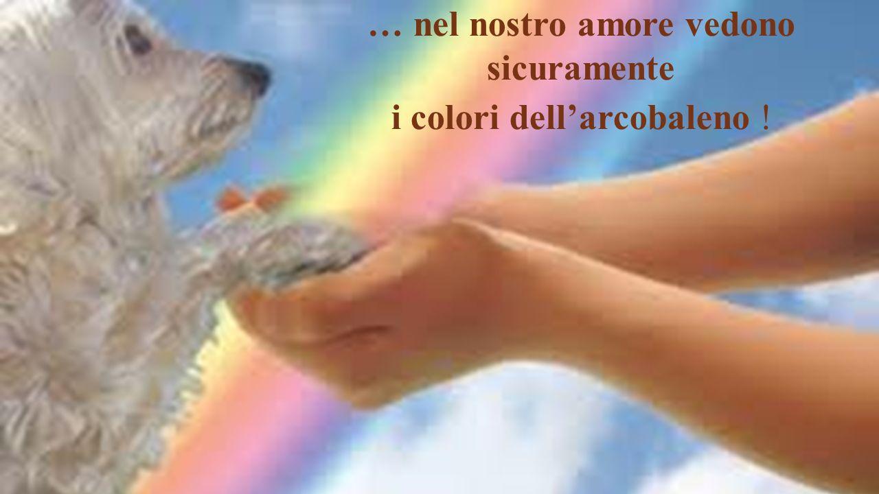 … nel nostro amore vedono sicuramente i colori dellarcobaleno !