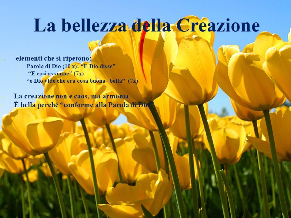 La bellezza della Creazione elementi che si ripetono: –P–Parola di Dio (10 x): E Dio disse – E così avvenne (7x) –e Dio vide che era cosa buona- bella