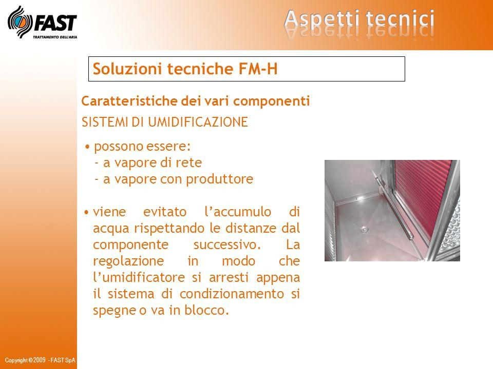 Copyright © 2009 - FAST SpA Soluzioni tecniche FM-H Caratteristiche dei vari componenti SISTEMI DI UMIDIFICAZIONE possono essere: - a vapore di rete -