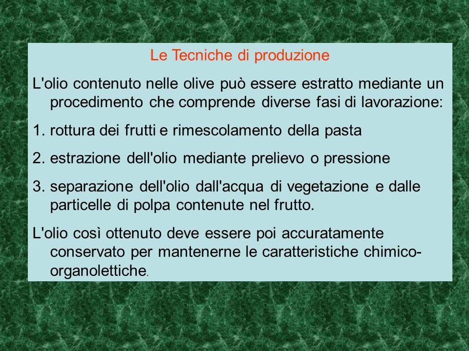 Le Tecniche di produzione L'olio contenuto nelle olive può essere estratto mediante un procedimento che comprende diverse fasi di lavorazione: 1.rottu