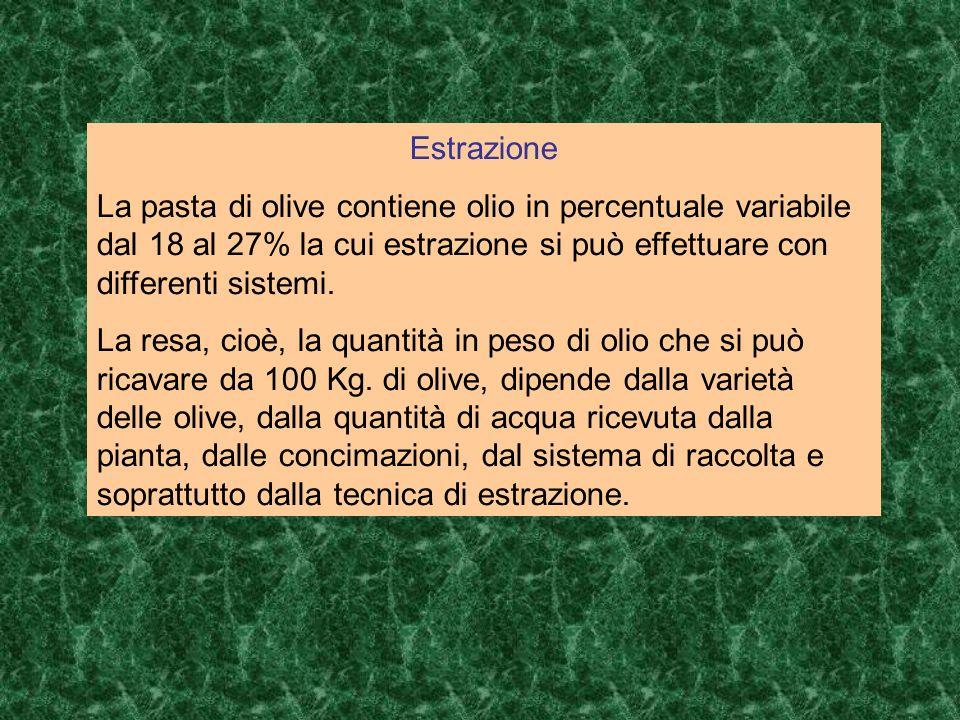 Estrazione La pasta di olive contiene olio in percentuale variabile dal 18 al 27% la cui estrazione si può effettuare con differenti sistemi. La resa,