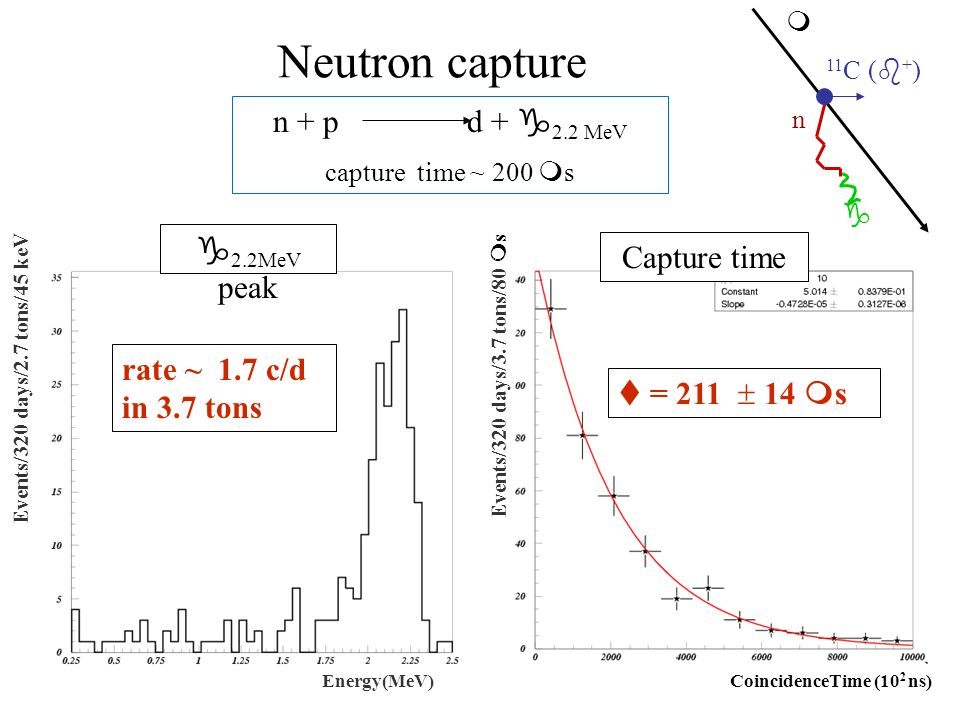 rate ~ 1.7 c/d in 3.7 tons Events/320 days/2.7 tons/45 keV Energy(MeV) Neutron capture n + p d + 2.2 MeV capture time ~ 200 s g 2.2MeV peak t = 211 14