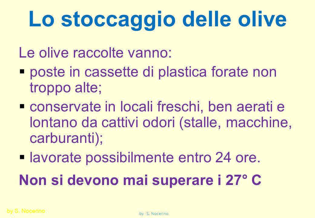 Lo stoccaggio delle olive Le olive raccolte vanno: poste in cassette di plastica forate non troppo alte; conservate in locali freschi, ben aerati e lo