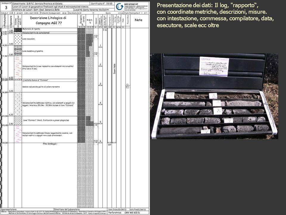 Presentazione dei dati: Il log, rapporto, con coordinate metriche, descrizioni, misure.
